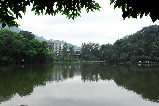 Hongzhu Shan Hotel :                   红珠山宾馆内景