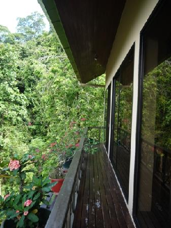 Nanga Damai Homestay:                   阳台