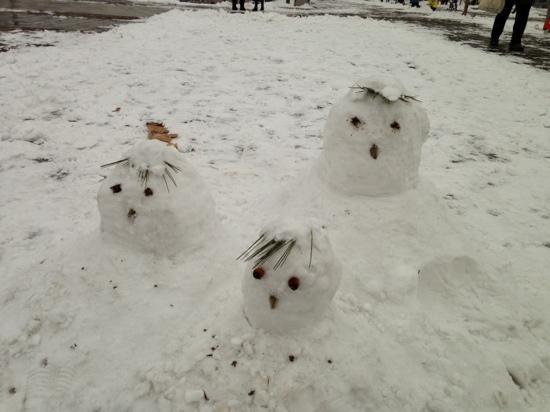 Beijing International Sculpture Park : 公园里的雪人