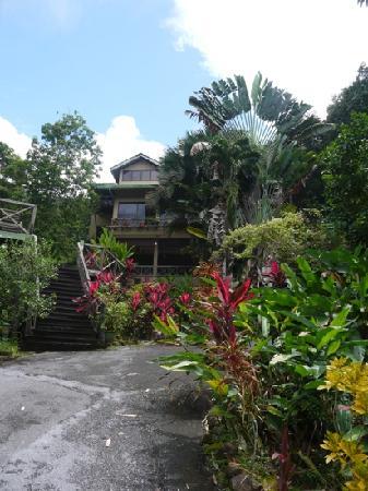 Nanga Damai Homestay:                   beautiful house
