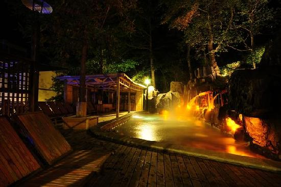 Forests Hotspring Holiday Village: 照片描述