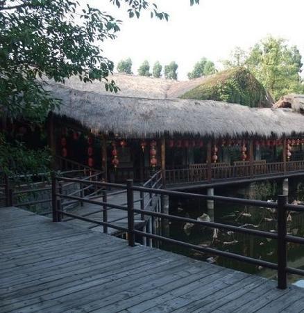 Modocom Cottage : 景色