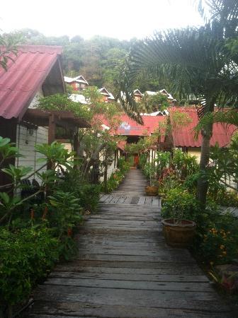 PP Casita: garden