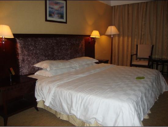 Vienna Hotel Huizhou Maidi: 照片描述