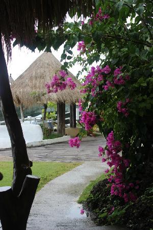 長灘島西灣度假村照片