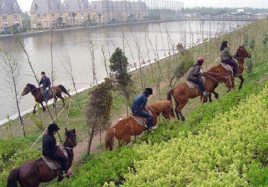 Shanghai Angle Bay Vacation Land: 骑马