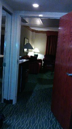 Embassy Suites by Hilton Tampa-USF/Near Busch Gardens: ke ting
