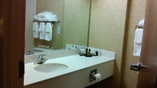 Embassy Suites by Hilton Tampa-USF/Near Busch Gardens: wei sheng jian