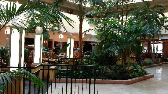 Embassy Suites by Hilton Tampa-USF/Near Busch Gardens: zao can qu