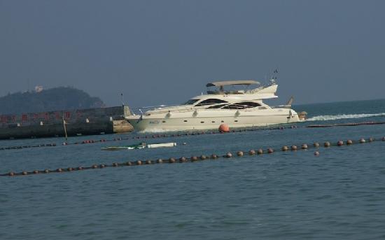 Dameisha International Yacht Club: 大梅沙游艇俱乐部的游艇