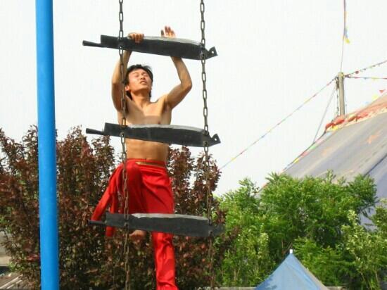 Wuqiao Acrobatics World