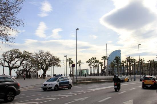 Barcelona Bike Tours : great
