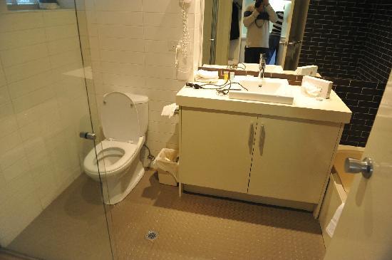 Lorne Bay View Apartments: 厕所