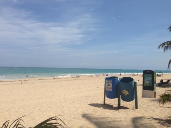 Ocean Park Beach照片
