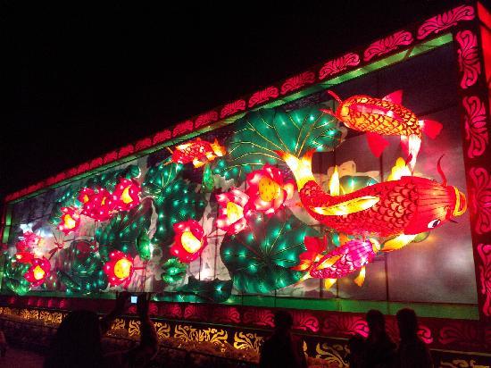 Sun Wen Memorial Park: 花灯