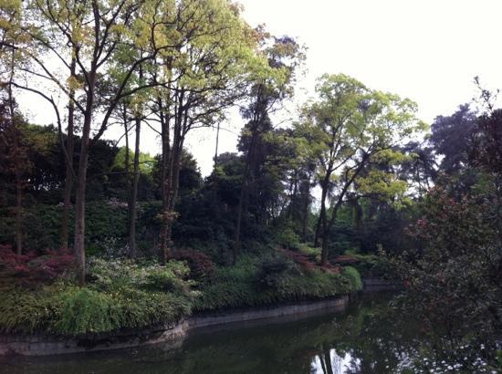 Nanshan Botanical Garden: 南山植物园