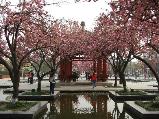 Chuanxiao Park