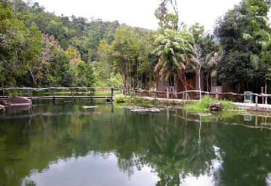 尖峰岭雨林谷养生度假村