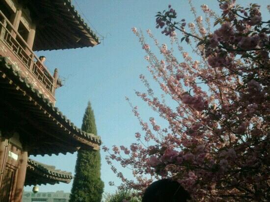 Qing Long Si: 一角
