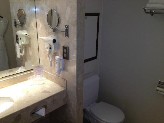 Mercure Strasbourg Palais des Congres: bath room
