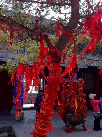 Bixia Temple