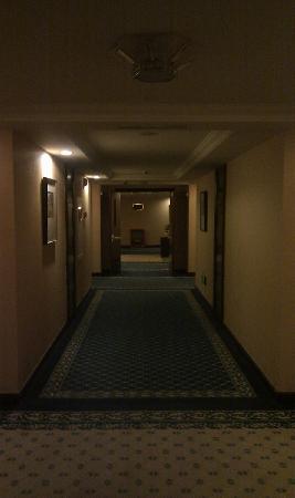 Changshou Country Garden Phoenix Hotel Chongqing: 大气的走廊