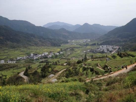 Jiangling Terrace Scenic Resort : 梯田