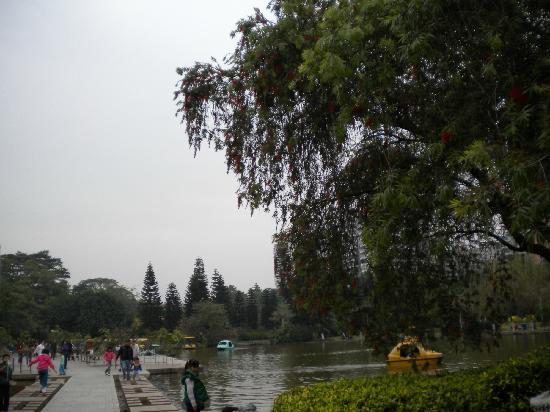 Eastern Suburbs Park