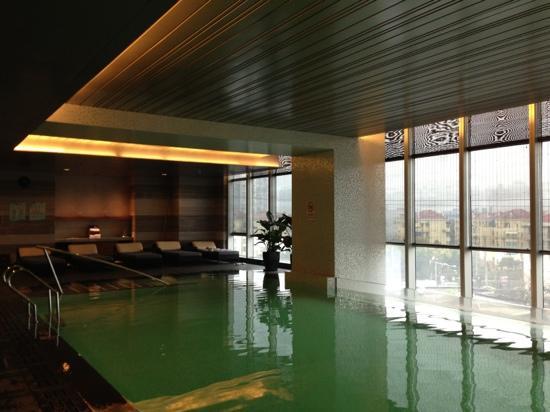 Renaissance Shanghai Putuo Hotel: 泳池