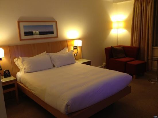 Hilton Dublin Airport Hotel: 房间