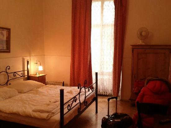 Hotel U Zlateho Jelena: 床舖有頭髮