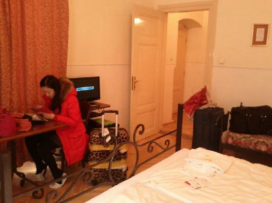 Hotel Golden deer: 木地板很老舊,房間有異味