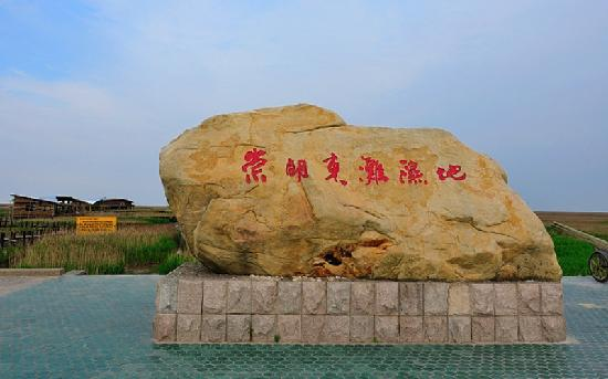 Chongming Dongtan Birds National Nature Reserve: 崇明东滩鸟类自然保护区