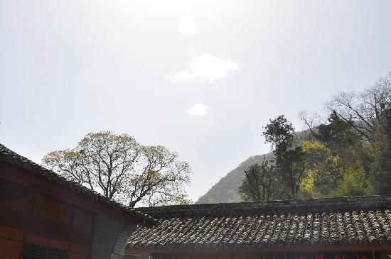 Hanzhong Zibai Mountain: 山顶