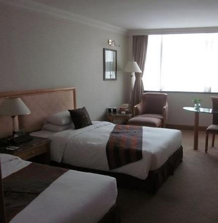 Wanyou Conifer Hotel: 房间
