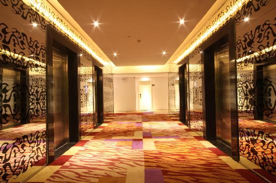 8oJinhao Shijue Hotel: 走廊