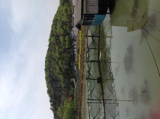 Lu Farmer House: 饭店门口的太湖