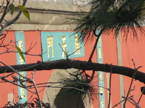 Taishan Geological Park : 远看南天门