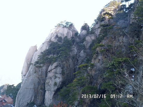 Jiuhua Mountain: 大鹏听经,栩栩如生