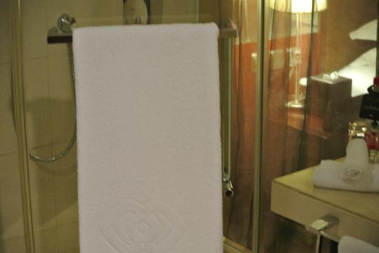 Sofitel Zhengzhou: 淋浴房