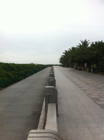 Shenzhen Bay Park: 海边栈道