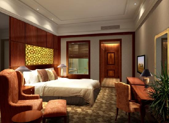 Zhuhai Dionysus Hotel : 高级房