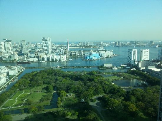 Conrad Tokyo: 我住 的是36层