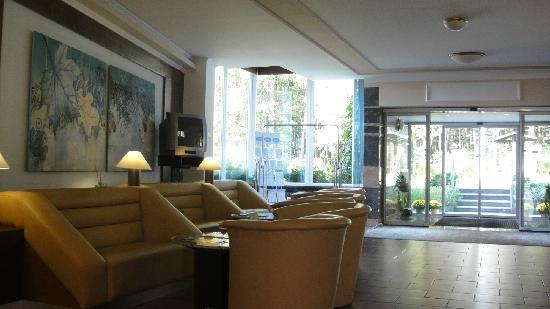 Hotel Agricola : 大堂
