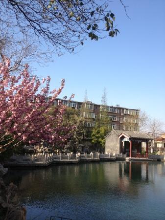 Pearl Spring Hotel: 珍珠泉