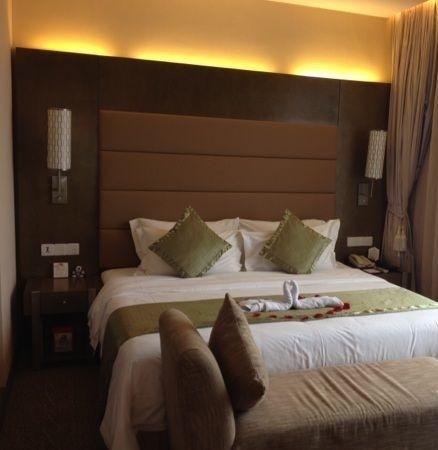 Shunde Jiaxin Conifer Garden Hotel: 房间