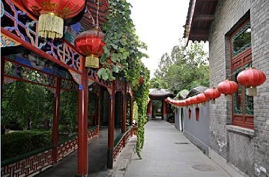 Bamboo Garden Hotel: 庭院一角