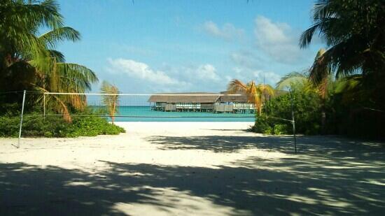Cocoa Island by COMO : 去年去的非常不错