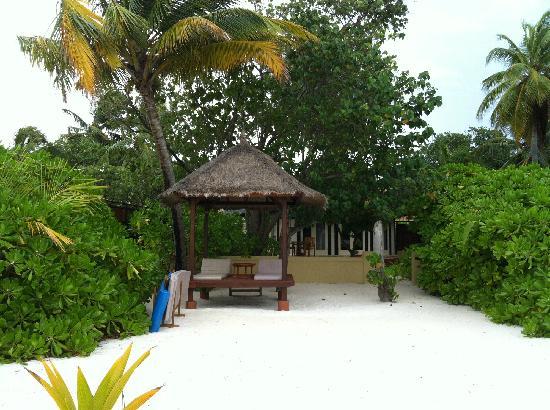 Banyan Tree Vabbinfaru : 别墅