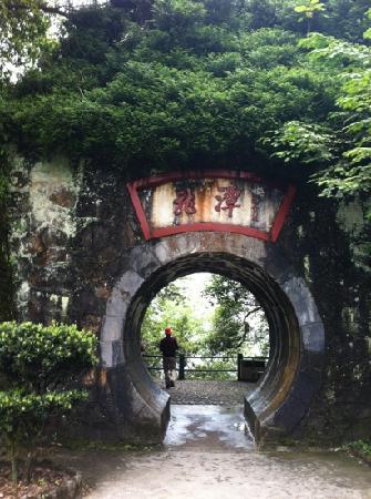 Jinggangshan Longtan Waterfall: 随景畅想的龙潭